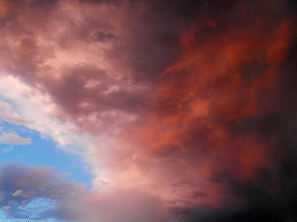 Clouds Poster featuring the photograph Storm by Paulina Roybal