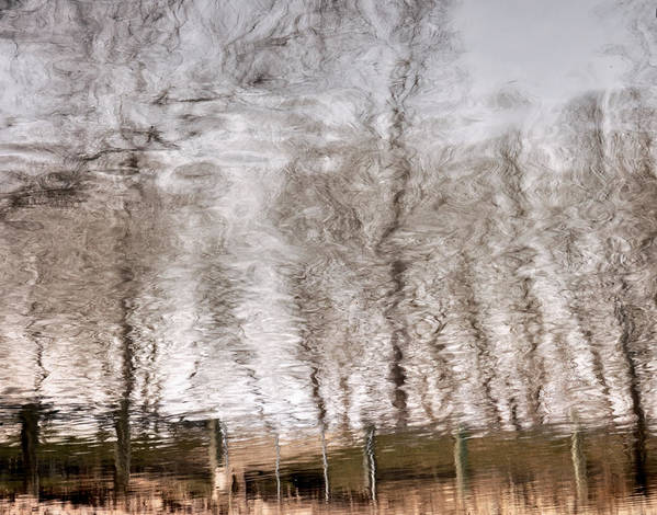 Abstracts Poster featuring the photograph Subdued Reflection by Steven Milner