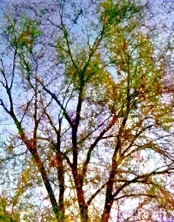 Trees Poster featuring the digital art Sun Dappled by Dale  Ford