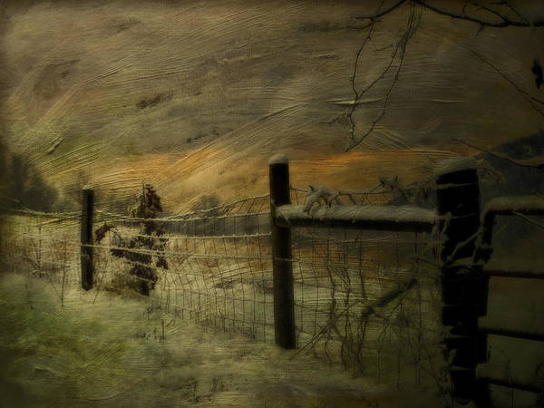 Winter Poster featuring the photograph Sunrise Behind The Fence by Kathy Jennings