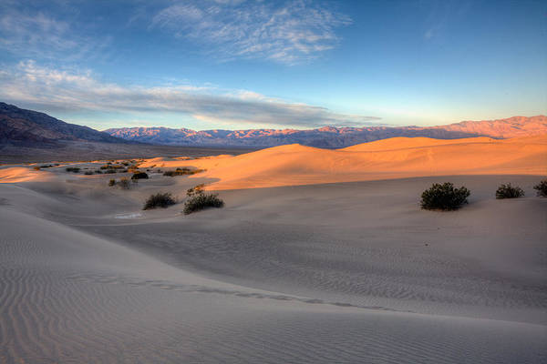 Mesquite Flats Duunes Poster featuring the photograph Sunrise Dunes by Peter Tellone