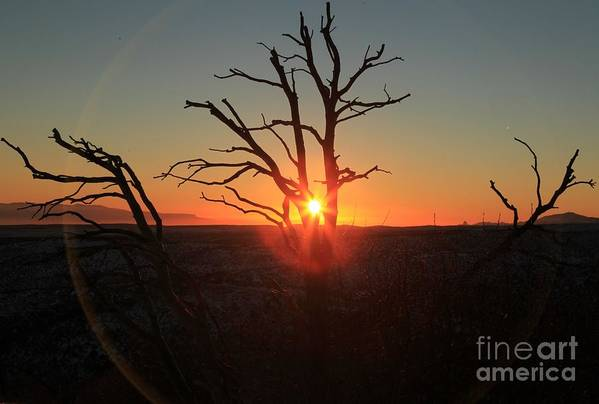 Mesa Verde National Park Poster featuring the photograph Sunset Bulls Eye by Adam Jewell
