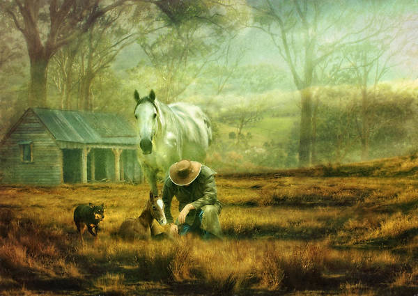 Connemara Poster featuring the photograph The Stock Horse by Trudi Simmonds