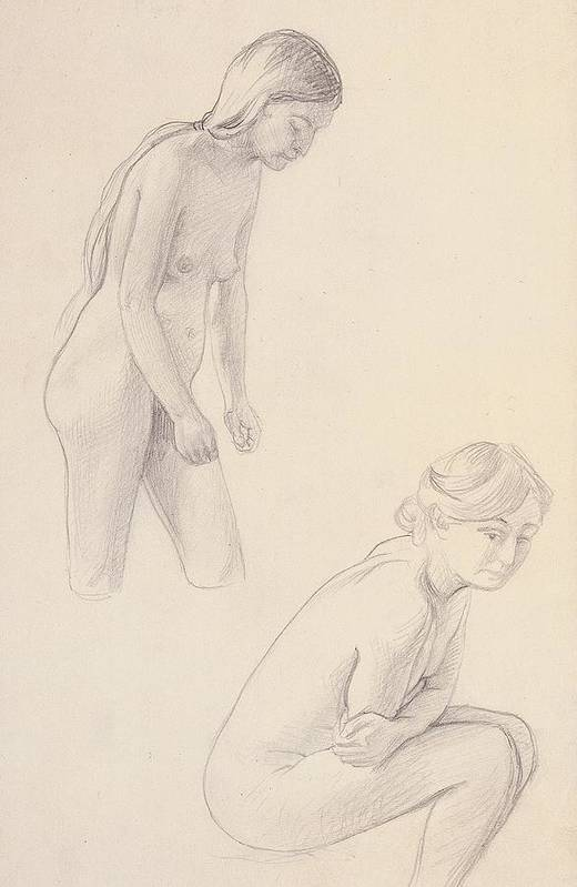 Nabis; Les Nabis; Two; Nude; Nudes; Female; Drawing; Sketch; Drawings; Studies; Crouching; Fear; Scared; Afraid; Cold; Defensive; Hunched; Sad; Emotion; Emotions; 19th; 20th Poster featuring the drawing Two Nudes by Felix Edouard Vallotton