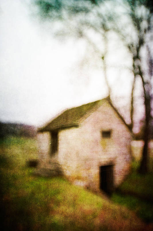 Blur Poster featuring the photograph Warner Park Springhouse by David Morel