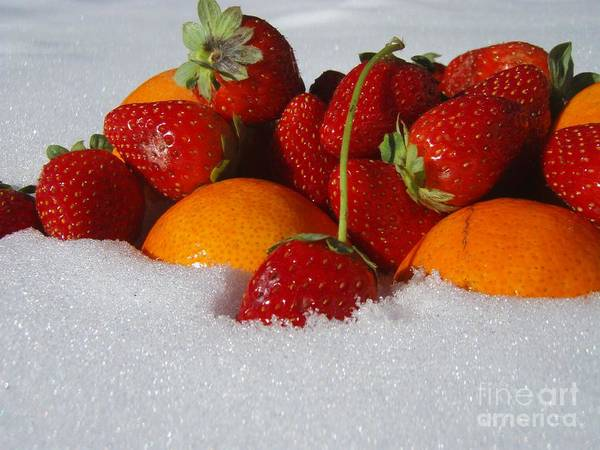 Fruit Strawberries Tangerines Snow Seasonal Poster featuring the photograph Winter Feast by Kristine Nora