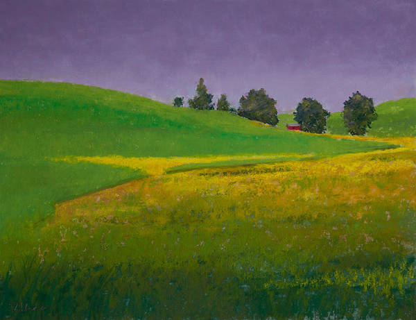 Pastel Poster featuring the painting A Sliver Of Canola by David Patterson