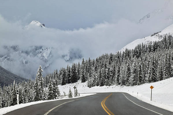Light Poster featuring the photograph Highway 40 In Winter, Highwood Pass by Darwin Wiggett