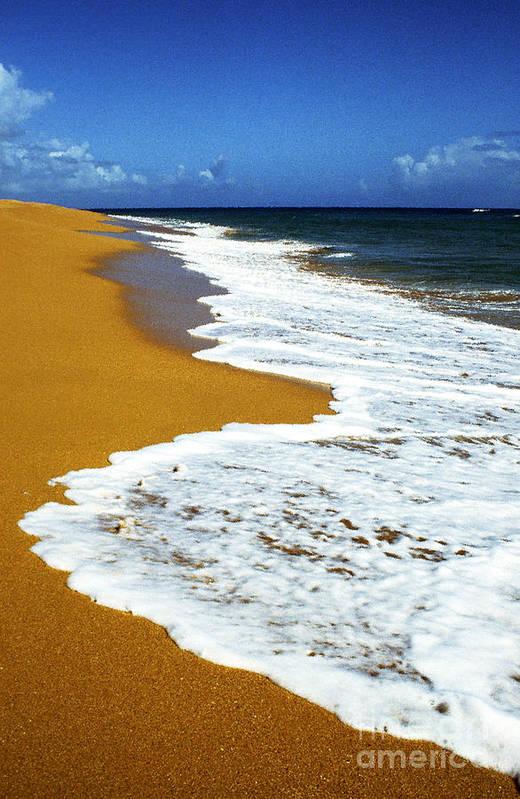 Puerto Rico Poster featuring the photograph Shoreline Along Pinones by Thomas R Fletcher