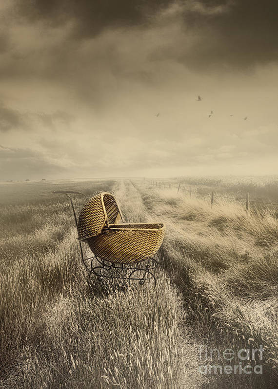 Abandoned Poster featuring the photograph Abandoned Antique Baby Carriage In Field by Sandra Cunningham