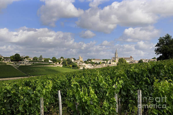 Winegrowing Poster featuring the photograph Village And Vineyard Of Saint-emilion. Gironde. France by Bernard Jaubert