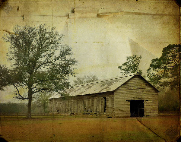 Old Poster featuring the photograph Abandoned Tobacco Barn by Carla Parris