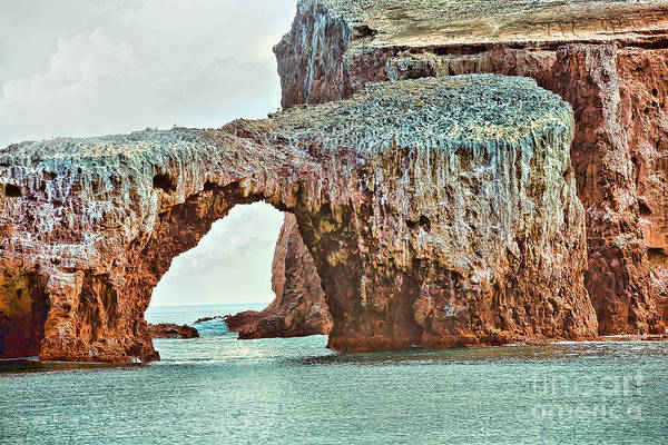 Anacapa Poster featuring the photograph Anacapa Island 's Arch Rock by Cheryl Young
