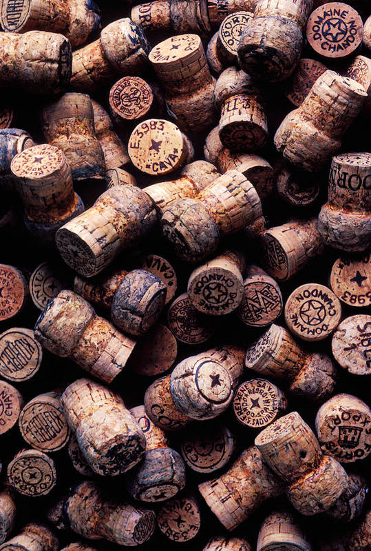 Champagne Corks Poster featuring the photograph Assorted Champagne Corks by Garry Gay