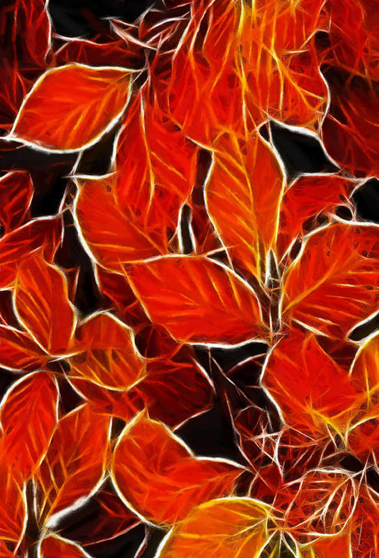 Pastel Oil Painting Drawing Leaves Autumn Blood Red Leaf Structure Texture Deco Poster featuring the pastel Autums Blood by Stefan Kuhn