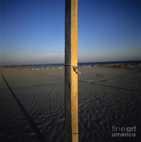 Bank Poster featuring the photograph Beach by Bernard Jaubert