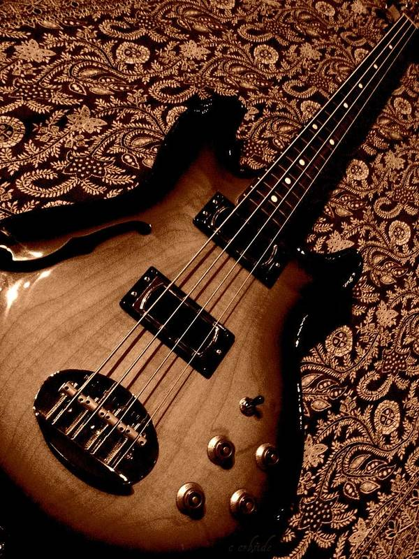 Bass Poster featuring the photograph Botanical Bass by Chris Berry