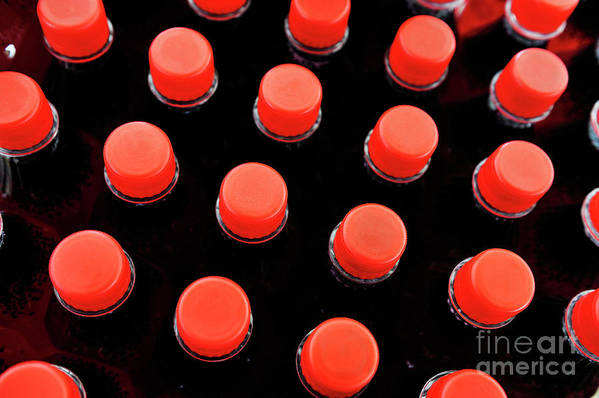 Conformity Poster featuring the photograph Bottles Red Caps by Sami Sarkis