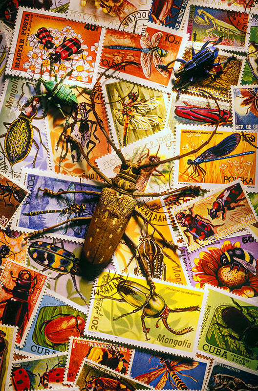 Stamp Poster featuring the photograph Bugs On Postage Stamps by Garry Gay