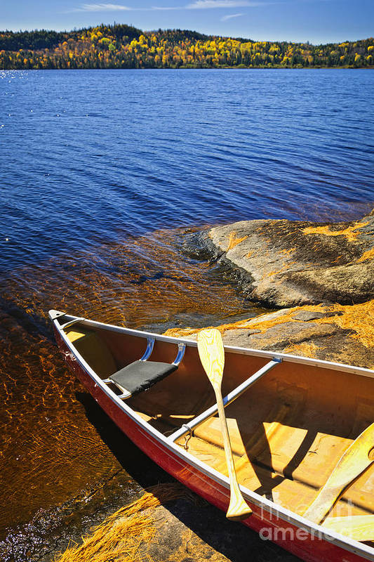 Canoe Poster featuring the photograph Canoe On Shore by Elena Elisseeva