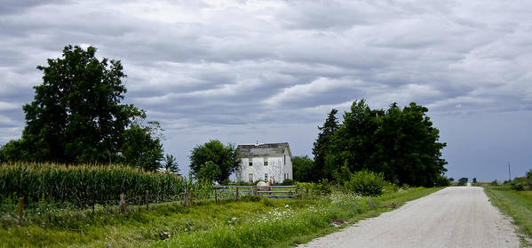 Horse Poster featuring the photograph Corn Storm Clouds Horse Dirt Road Old House by Wilma Birdwell