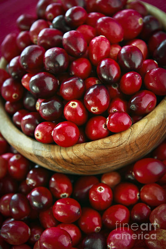 Cranberry Poster featuring the photograph Cranberries In A Bowl by Elena Elisseeva