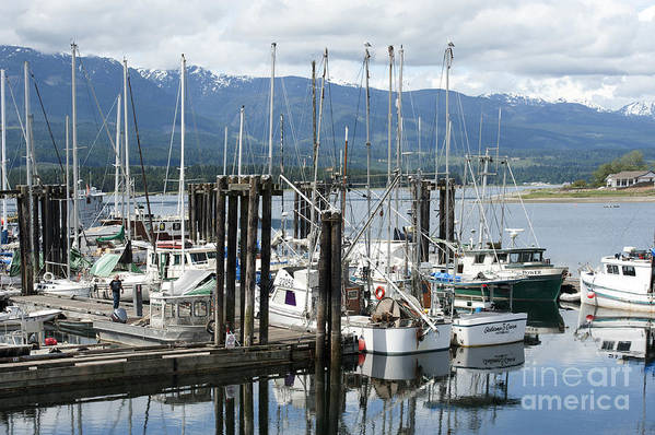 Deep Bay British Columbia Poster featuring the photograph Deep Bay Harbor by Artist and Photographer Laura Wrede