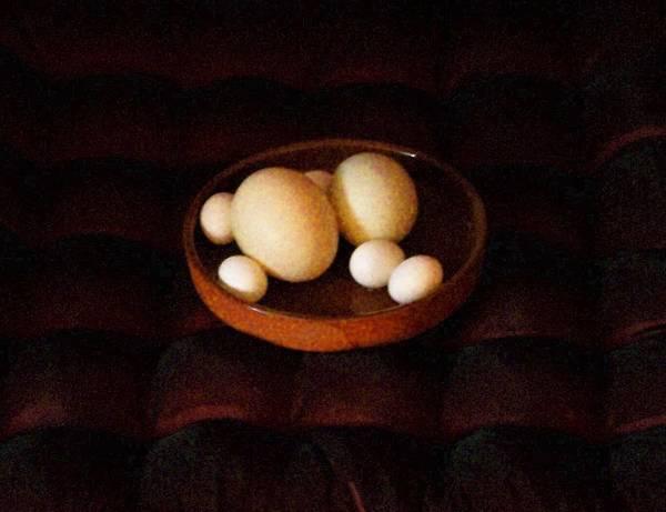 Still Life Poster featuring the mixed media Eggs by YoMamaBird Rhonda