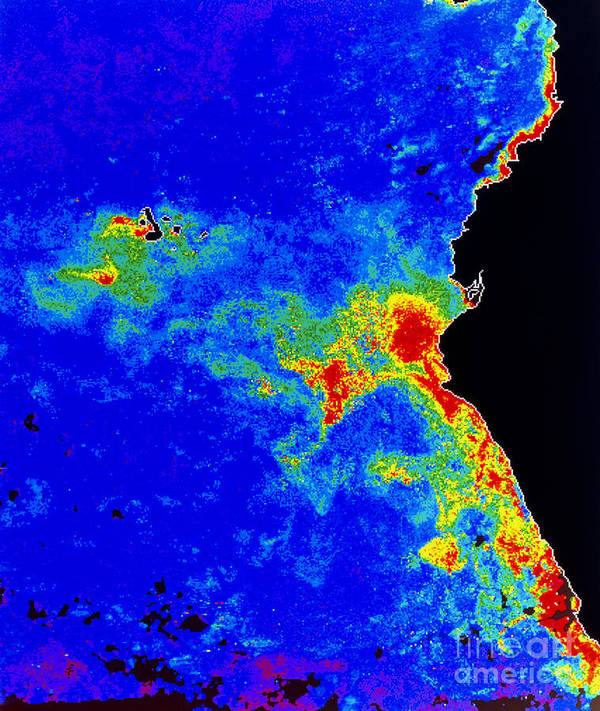 Phytoplankton Poster featuring the photograph Fal-col Satellite Image Of Coastal by Dr. Gene Feldman, NASA Goddard Space Flight Center