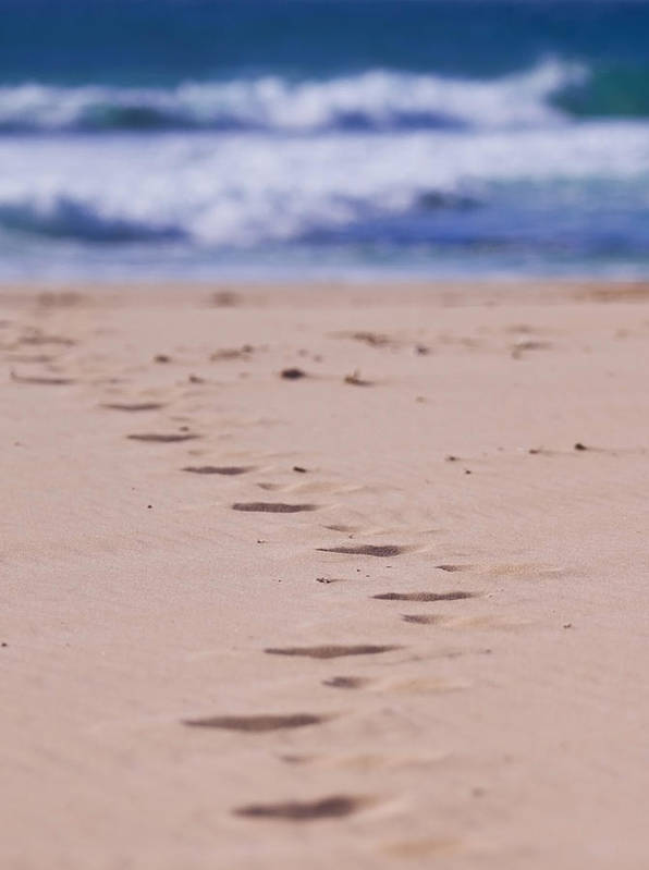 Beach Poster featuring the photograph Footprints by Michelle Wrighton