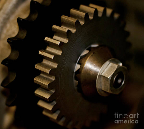 Gears Poster featuring the photograph Gears by Wilma Birdwell