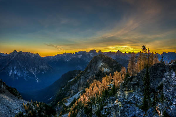 North Cascades Poster featuring the photograph Golden Larch by Ian Stotesbury
