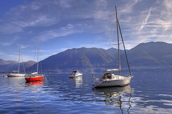 Sail Boats Poster featuring the photograph Lago Maggiore by Joana Kruse