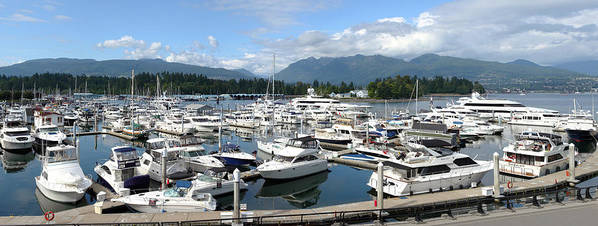 Businesses Poster featuring the photograph Large Marina In Vancouver Bc Canada. by Gino Rigucci