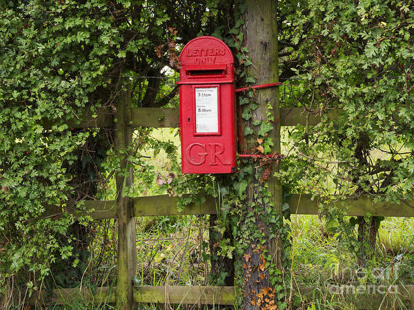 Letterbox Poster featuring the photograph Letterbox In A Hedge by Louise Heusinkveld