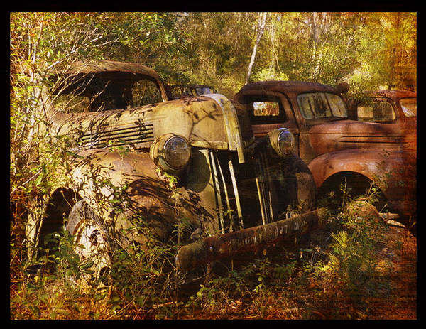 Truck Poster featuring the photograph Lost In Time by Carla Parris