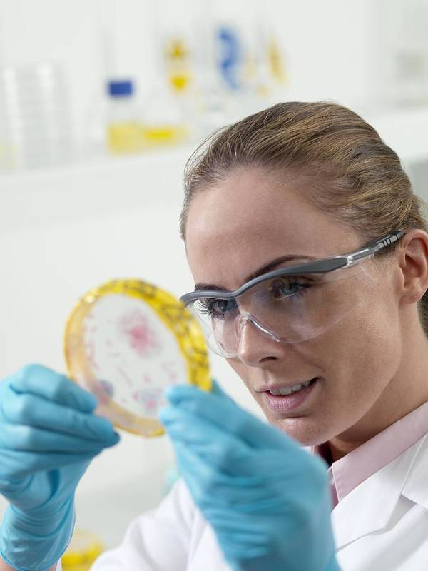 Human Poster featuring the photograph Microbiological Research by Tek Image
