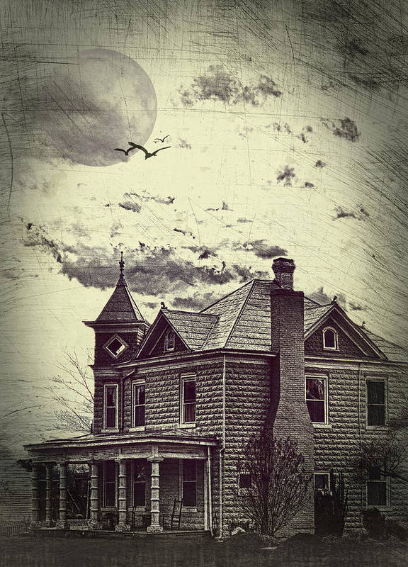 House Poster featuring the photograph Moonlit Night by Kathy Jennings