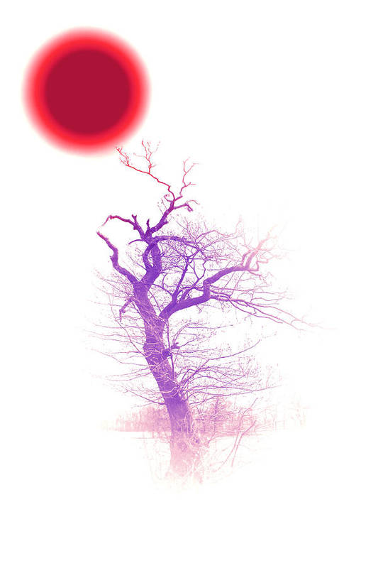 Red Sun Sunlight Tree Trees Color Colorful Abstract Fog Mist Poster featuring the digital art Nippon Sunset 2 by Stefan Kuhn