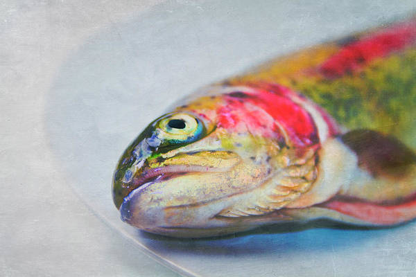 Horizontal Poster featuring the photograph Rainbow Trout On Plate by Image by Catherine MacBride