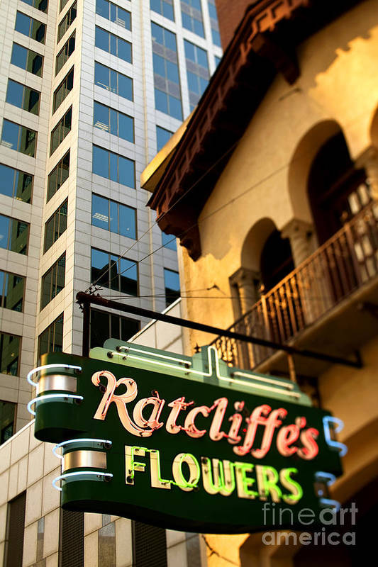 Charlotte Poster featuring the photograph Ratcliffes Flowers by Patrick Schneider