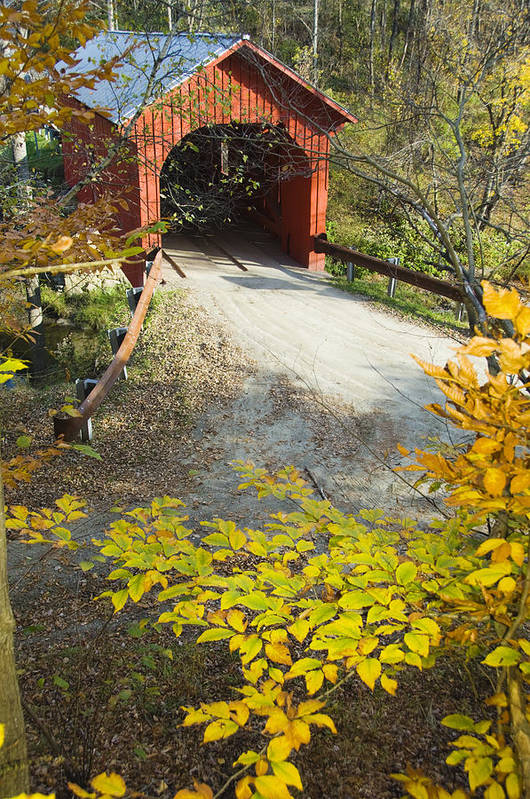 Architecture Poster featuring the photograph Slaughter House Bridge And Fall Colors by James Forte