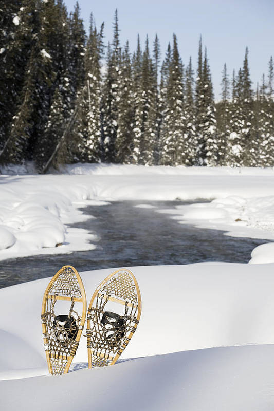 Blue Sky Poster featuring the photograph Snowshoes By Snowy Lake Lake Louise by Michael Interisano