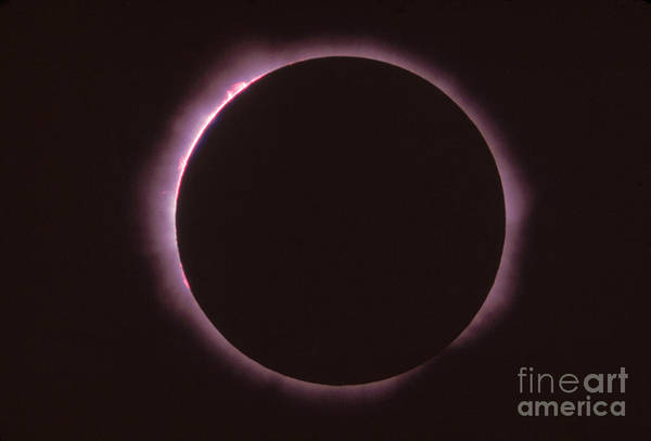 Solar Eclipse Poster featuring the photograph Solar Prominence And Chromosphere by Science Source