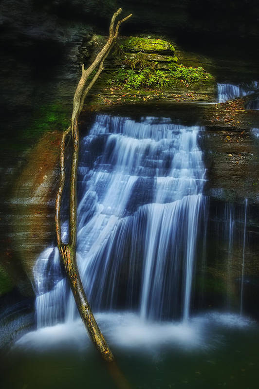 Waterfall Poster featuring the photograph Standing In Motion by Evelina Kremsdorf