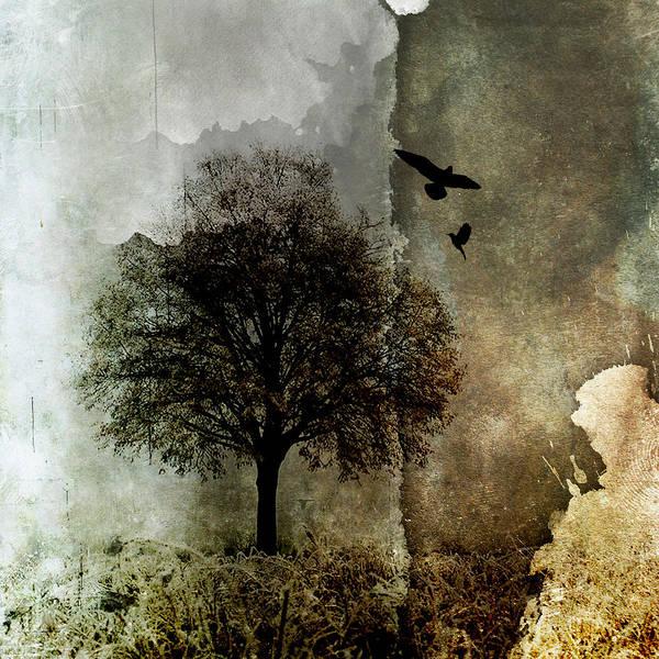 Nature Poster featuring the digital art Storm2 by Su Ferguson - Don Burkheimer