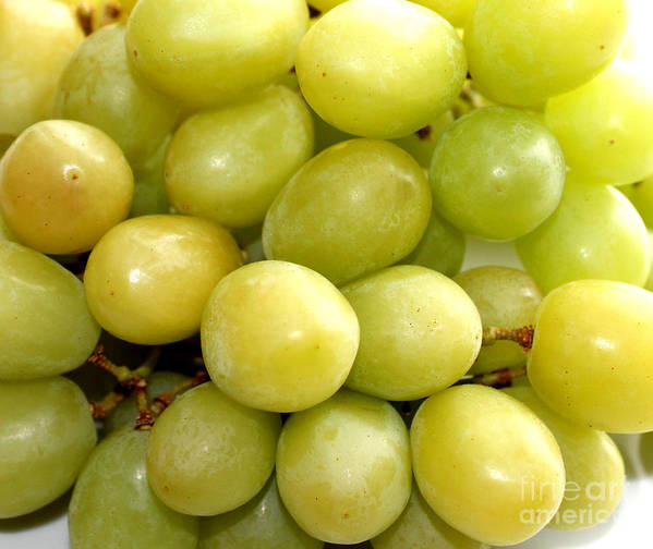 Sweet Green Grapes Poster featuring the photograph Sweet Green Grapes by Barbara Griffin