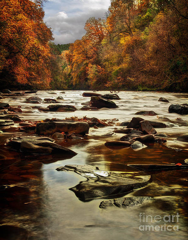 Fall Poster featuring the photograph The Fall On The River Avon by John Farnan