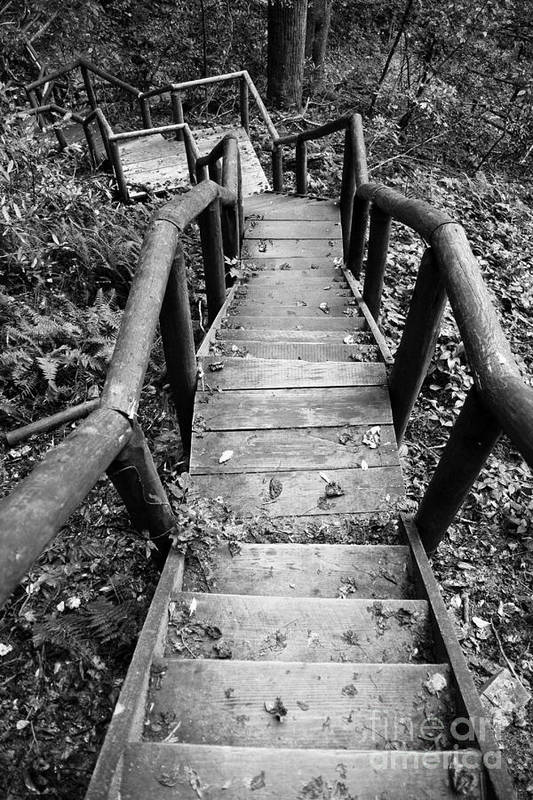 Stairs Poster featuring the photograph The Way Down by Olivier Steiner