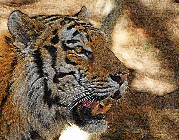 Tiger Poster featuring the photograph Tiger De by Ernie Echols